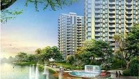 DongHua Property